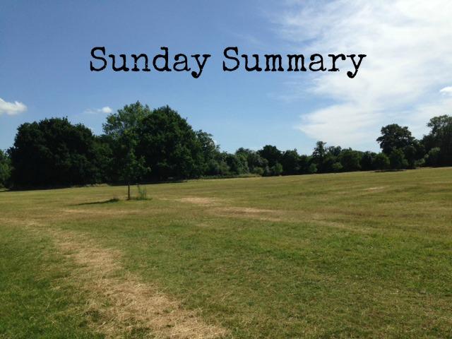 Sunday Summary Header
